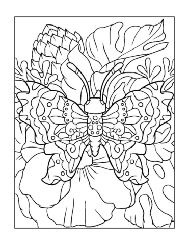 Coloring-Pages_Butterflies-14-01-pdf-791x1024-640x480 Free Printable Butterfly Colouring Pages