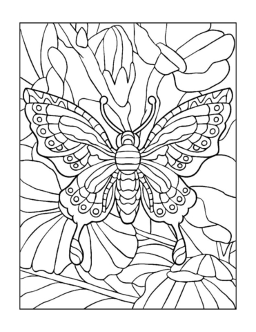Coloring-Pages_Butterflies-3-01-1-pdf-791x1024-640x480 Free Printable Butterfly Colouring Pages