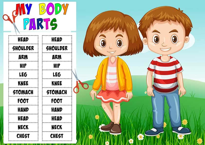 body_parts Learn Your Body Parts Activity Sheets